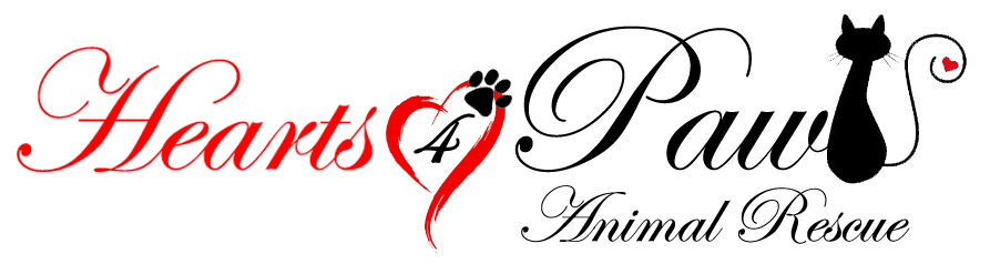 Hearts4Paws Rescue